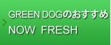 GREEN DOGのおすすめNOW FRESH