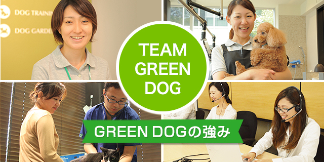 TEAM GREEN DOG