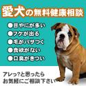 愛犬の無料健康相談