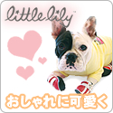 Little Lily リリーブーツ