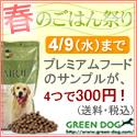 GREEN DOG:春のごはん祭