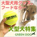 GREEN DOG:大型犬用商品特集