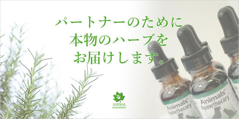 Animal Essentials(アニマルエッセンシャルズ)