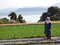 長崎県 契約農家農場イメージ