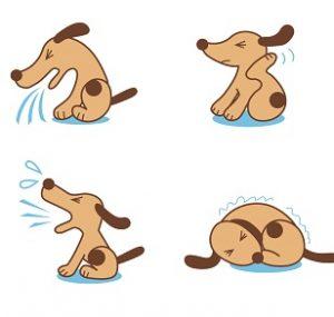うつる 犬 病気 から