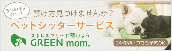 GREEN mom.