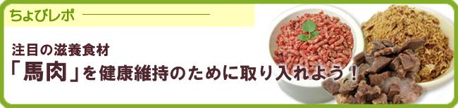 高タンパクで低カロリーな馬肉おやつ