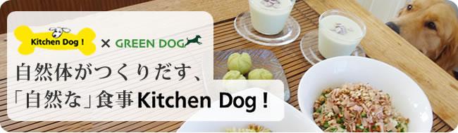 キッチンドッグ×グリーンドッグ 自然体がつくりだす、自然な食事キッチンドッグ!