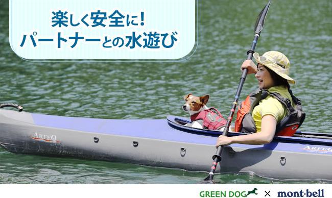 楽しく安全に!パートナーとの水遊び