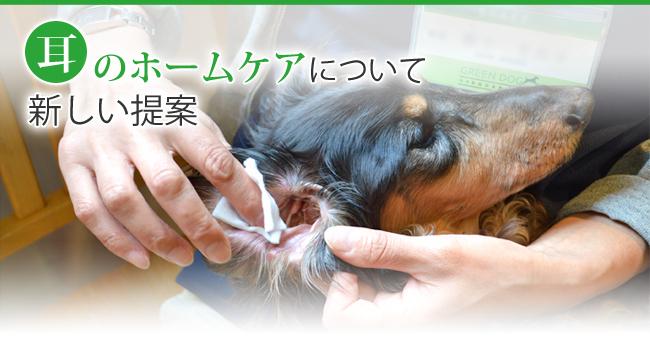 耳のホームケアについて 新しい提案