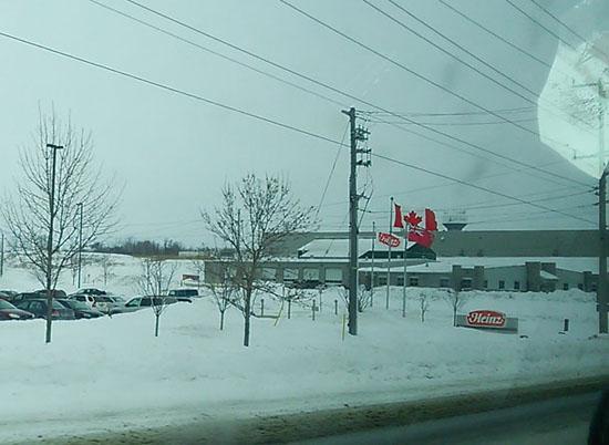 雪に埋もれるニュートレコ社