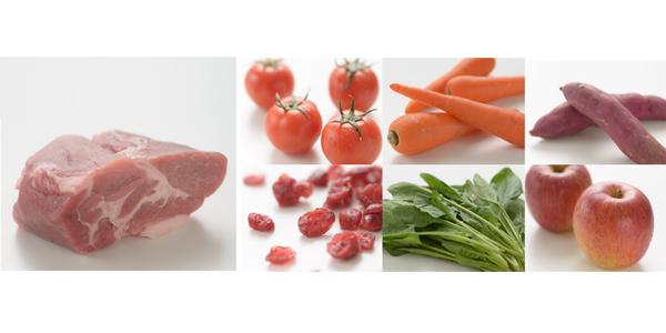 ナチュラリー・フレッシュは新鮮生肉100%。食べっぷり抜群。