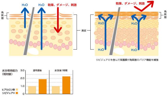 リピジュア(R)を含んだ保護膜が角質層のバリアを補強、水分保持能力 グラフ