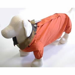 犬と生活 レインコート(Wコーギー・メス用)