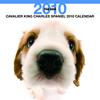 THE DOGカレンダー キャバリア・キング・チャールズ・スパニエル 2010