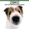 THE DOGカレンダー シェットランド・シープドッグ 2010