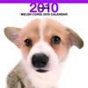 THE DOGカレンダー ウェルシュ・コーギー 2010