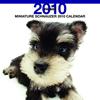 THE DOGカレンダー ミニチュア・シュナウザー 2010