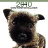 THE DOGカレンダー ケアーン・テリア 2010