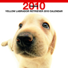 THE DOGカレンダー ラブラドール・レトリーバー(イエロー) 2010
