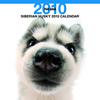 THE DOGカレンダー シベリアン・ハスキー 2010