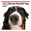 THE DOGカレンダー バーニーズ・マウンテン・ドッグ 2011