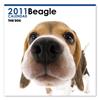 THE DOGカレンダー ビーグル 2011