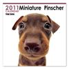 THE DOGカレンダー ミニチュア・ピンシャー 2011
