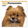 THE DOGカレンダー ポメラニアン 2011