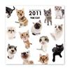 THE CATカレンダー オールスターカレンダー(ミニ) 2011