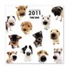 THE DOGカレンダー オールスターカレンダー(ミニ) 2011