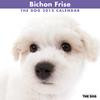THE DOGカレンダー2012 ビション・フリーゼ