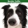 THE DOGカレンダー2012 ボーダー・コリー