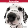 THE DOGカレンダー2012 ダルメシアン