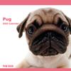 THE DOGカレンダー パグ 2009