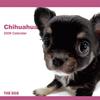 THE DOGカレンダー チワワ 2009