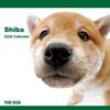 THE DOGカレンダー 柴 2009