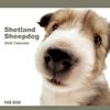 THE DOGカレンダー シェットランド・シープドッグ 2009