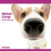 THE DOGカレンダー ウェルシュ・コーギー 2009