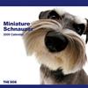 THE DOGカレンダー ミニチュア・シュナウザー 2009