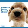 THE DOGカレンダー アメリカン・コッカー・スパニエル 2009