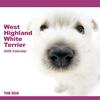 THE DOGカレンダー ウエスト・ハイランド・ホワイト・テリア 2009