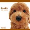THE DOGカレンダー プードル 2009