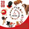 THE DOG オールスターカレンダー 2009