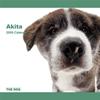 THE DOG逆輸入カレンダー 秋田 2009