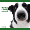 THE DOG逆輸入カレンダー ボーダー・コリー 2009