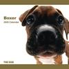 THE DOG逆輸入カレンダー ボクサー 2009