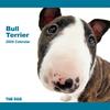 THE DOG逆輸入カレンダー ブル・テリア 2009