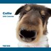 THE DOG逆輸入カレンダー コリー 2009
