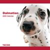 THE DOG逆輸入カレンダー ダルメシアン 2009